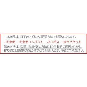 [DIA14.2mm]レリッシュ LALISH 2箱セット 中村アン カラコン 1箱10枚入り 送料無料 1日使い捨て ワンデー 度あり 度なし コンタクト アイセイ|appeal|06