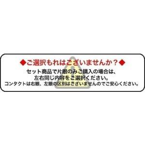 [DIA14.2mm]レリッシュ LALISH 2箱セット 中村アン カラコン 1箱10枚入り 送料無料 1日使い捨て ワンデー 度あり 度なし コンタクト アイセイ|appeal|07