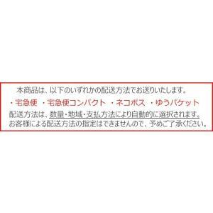 フレッシュルック ワンデーカラー カラコン カラーコンタクト 度なし度あり ワンデー 1箱|appeal|04