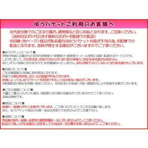 フレッシュルック ワンデーカラー カラコン カラーコンタクト 度なし度あり ワンデー 1箱|appeal|05