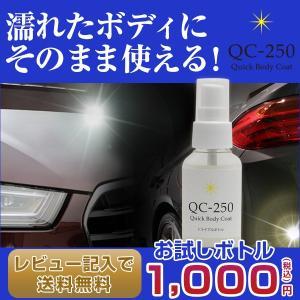 《お試しボトル》クイックボディコートQC-250【撥水&コーティング剤】|applause-gps