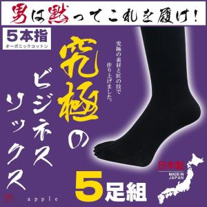 靴下 ビジネスソックス メンズ 五本指ソックス 綿100% 夏用 ソックス くつ下 socks RSL|apple1013