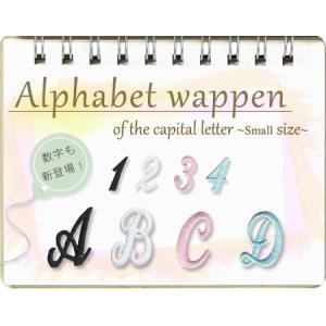 アルファベットワッペン 筆記体 大文字(小)