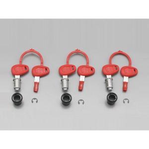 デイトナ D90170 GIVI Z228 セイムナンバーキー 3本セット の商品画像|ナビ