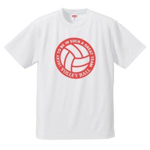 バレーボール Tシャツ ドライ ウェア 練習着 チーム クラブ 全12色 V701 送料無料|apricot-uns