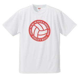 【名入れ】バレーボール Tシャツ ドライ ウェア 練習着 チーム クラブ 全12色 V701 送料無料 apricot-uns