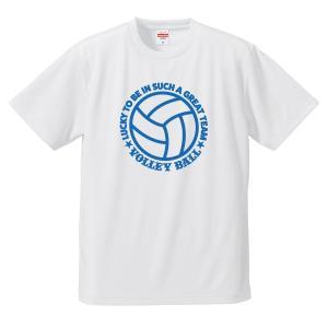 バレーボール Tシャツ ドライ ウェア 練習着 チーム クラブ 全12色  V702 送料無料|apricot-uns