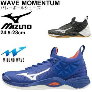 バレーボールシューズ メンズ レディース ミズノ mizuno WAVE MOMENTUM ウエーブモーメンタム 2.5E相当 男女兼用 一般 学生 /V1GA1912|apworld