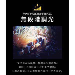 【水中ライト】LYCAN/ライキャン VIDEO1200|aqrosnetshop|11