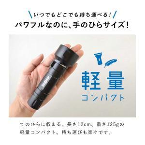 【水中ライト】LYCAN/ライキャン VIDEO1200|aqrosnetshop|12