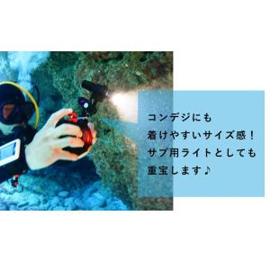 【水中ライト】LYCAN/ライキャン VIDEO1200|aqrosnetshop|13