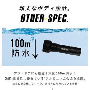 【水中ライト】LYCAN/ライキャン VIDEO1200|aqrosnetshop|14