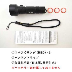 【水中ライト】LYCAN/ライキャン VIDEO1200|aqrosnetshop|15