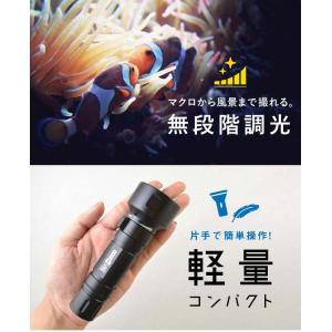 【水中ライト】LYCAN/ライキャン VIDEO1200|aqrosnetshop|04