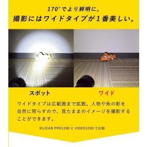 【水中ライト】LYCAN/ライキャン VIDEO1200|aqrosnetshop|07