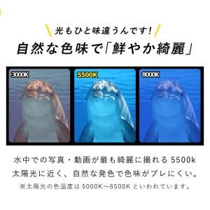 【水中ライト】LYCAN/ライキャン VIDEO1200|aqrosnetshop|08