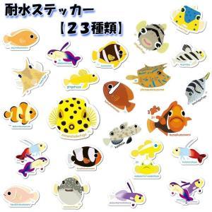 【ステッカー】お魚ステッカー01