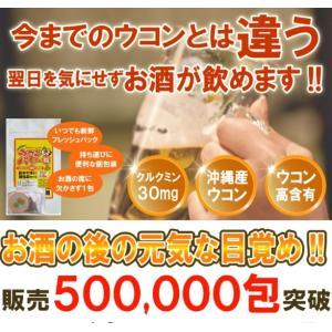 ウコンパワー粒30包 送料無料 沖縄ウコン堂 毎日の健康にどうぞ|aqua-green
