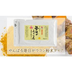 送料無料 毎日がうこん粉 100g 三種混合 沖縄ウコン堂 健康|aqua-green