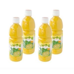 シークヮーサー果樹100%4本 送料無料 シークヮーサー ノビレチン ビタミンC|aqua-green