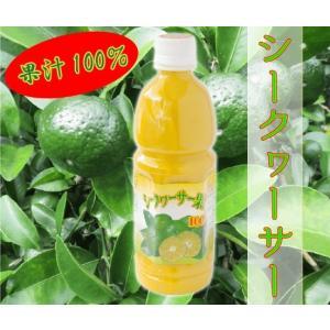シークヮーサー果樹100%24本 業務用卸価格 ビタミンC  ノビレチン|aqua-green