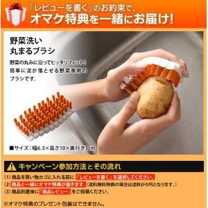 水切りかご 水切りラック スリム シンク上 ステンレス KAWAKI 渡式 野菜ブラシ特典|aqua-inc|03