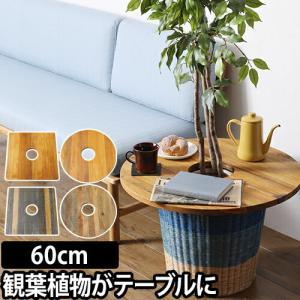プランツテーブル 60cm Plants Table 大 観葉植物 ウッド ミニテーブル|aqua-inc