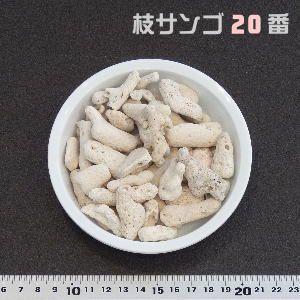 業務用 枝サンゴ 20番(濾材用) 20KG
