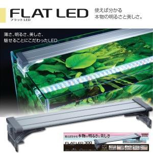 コトブキ フラットLED 300 シルバー 30cm 水槽用照明・ライト 『照明・ライト』|aqua-legend