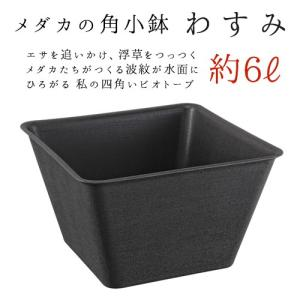 スドー メダカの角小鉢 わすみ|aqua-legend