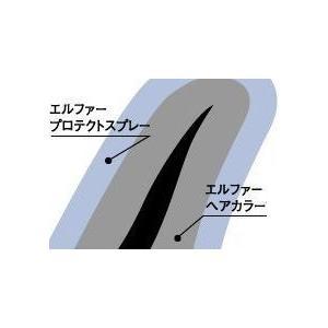 髪や頭皮にやさしい エルファーボリュームアップ増毛スプレー 茶 150g アロエエキス配合|aqua-life|04