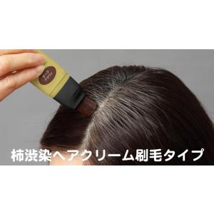 サッとひと塗りポイント白髪ケア 柿渋染ヘアクリーム刷毛タイプ ブラック|aqua-life|02