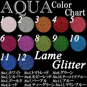ジェルネイル 微粒子ラメグリッター 選べる12色(約2g入り)|aqua-nail