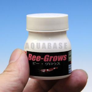 アクアシステム ビーグロウス|aquabase