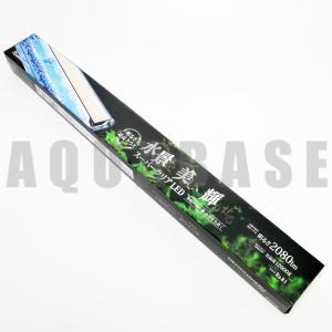 ニッソー PGスーパークリアLEDライト 900|aquabase