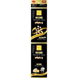 ビタワン君のプチチーズ 15g×4連パック|aquabase