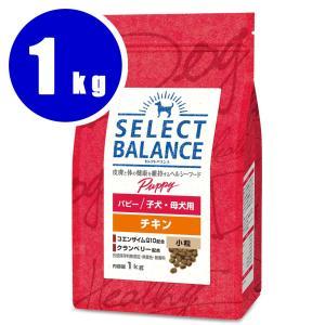 セレクトバランス パピーチキン 小粒 1kg|aquabase