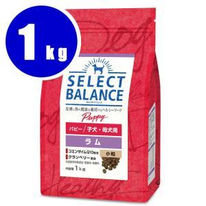 セレクトバランス パピーラム 小粒 1kg|aquabase