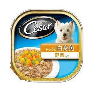 シーザー ふっくら白身魚 野菜入り 100g|aquabase