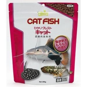 キョーリン ひかりクレスト キャット 295gパック 【特売】|aquabase