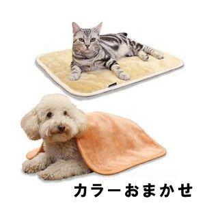 ドギーマンハヤシ ほわぽか 掛け敷き毛布 M 【カラーおまかせ】|aquabase