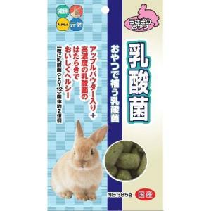 ハイペット 乳酸菌 85g|aquabase