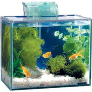 コトブキ アクアスタイルS 3点フィルターセット|aquabase