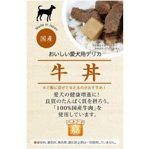 APS エーピーエス ベストフード嘉 牛丼 150g|aquabase