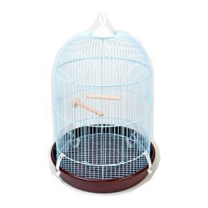 エクセル NEW カナリアのドリームハウス|aquabase