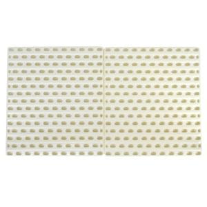 三晃商会 イージーホーム80シリーズ用 樹脂休足フロアー 半面2枚セット|aquabase