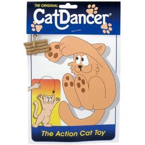 プラッツ キャットダンサー|aquabase