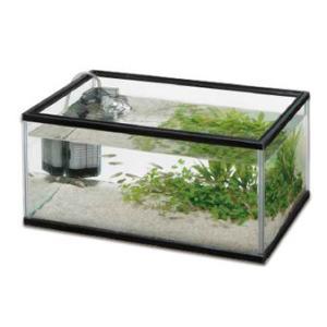 水作 メダカファミリーフラット L|aquabase
