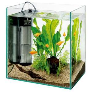 水作 グラスガーデン N230 ニュースペースパワーフィットS入り|aquabase