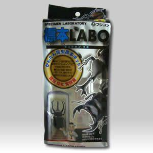 フジコン 標本LABO|aquabase